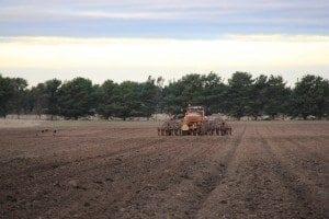 CTF Planting 1 Winchelsea