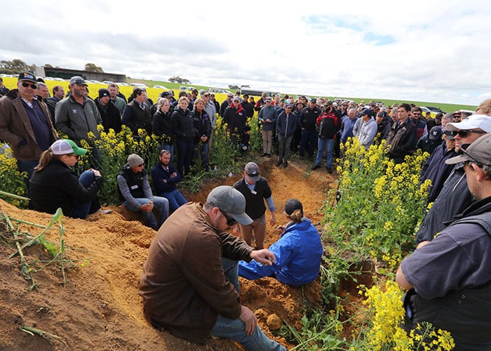 Growers at a Controlled Traffic Farming Field Day